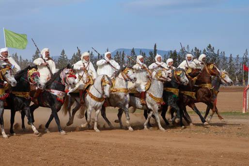 كازينو فلسطين سباق 526146