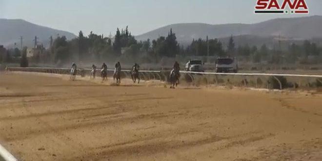 سباقات الخيول في 190588